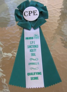 CPE Qualifying Ribbon