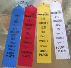 CPE Placement Ribbons